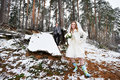 Happy bride and groom in winter forest Royalty Free Stock Photo