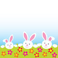 Happy bunnies Royalty Free Stock Photography