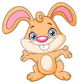 Happy bunny Stock Photography