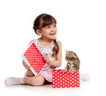 Happy child girl holding gift box with kitten Stock Images