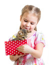 Happy child girl holding gift box with kitten isolated Stock Images
