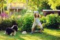 Happy child girl playing with her spaniel dog and throwing ball Royalty Free Stock Photo