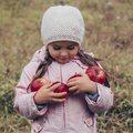 Happy child holding red apples in his hands. Harvest Funny kid outdoors in autumn park