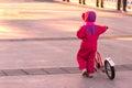 Happy child riding a bike. Royalty Free Stock Photo