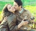 Happy couple drinking red wine Stock Image