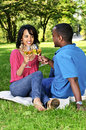 Happy couple having wine in park Royalty Free Stock Photography