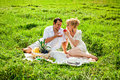 Happy couple at a picnic young making in the park Royalty Free Stock Photo