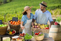 Happy couple standing by fresh fruits and vegetables Royalty Free Stock Photo