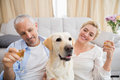 Happy couple with their pet dog drinking champagne at home in the living room Royalty Free Stock Image