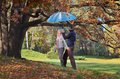 Happy couple with umbrella in love blue resting in autumn forest Stock Photos
