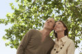 Happy couple under tree looking away low angle view of middle aged Stock Images