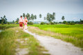 Happy couple walking at padi field newly wedded on path Royalty Free Stock Photo