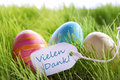 Happy easter background with colorful eggs and label with german text vilene dank three vielen on green grass for seasons Stock Photo