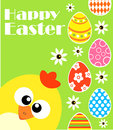 Happy easter background with funny chicken green card Royalty Free Stock Image