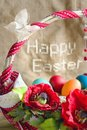 Happy easter basket eggs poppies butterfly Royalty Free Stock Photos