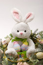 Happy Easter bunny and eggs Stock Image