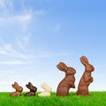 Happy easter bunny family easter egg hunting fine spring day Royalty Free Stock Photography
