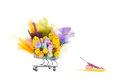 Happy easter chickens in a shopping cart Stock Photography