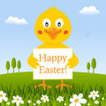 Happy Easter Cute Chick in a Meadow Royalty Free Stock Photo