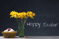 Happy easter daffodil in a glass with eggs and little gift Stock Photography