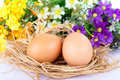 Happy Easter eggs flowers Royalty Free Stock Photography
