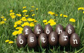 Happy easter the eggs with letters forming the text frohe ostern Stock Photography
