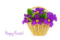 Happy Easter: Flowers in the basket