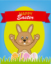 Happy easter rabbit with eggs Stock Photo