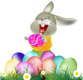 Happy easter rabbit and eggs holiday Stock Photography
