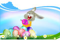 Happy easter rabbit and eggs holiday Stock Photos