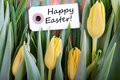 Happy easter with tulips on a label yellow Stock Photography