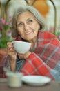 Happy elderly woman drinking tea portrait of beautiful Stock Photography