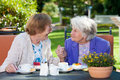 Happy Elderly Women Chatting A...