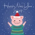 The happy pink pig for New Year card.