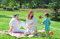 Happy family have picnic in the park Stock Image