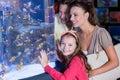 Happy family looking at fish tank the aquarium Royalty Free Stock Image