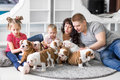 Happy family lying on carpet with puppies of English bulldog Royalty Free Stock Photo