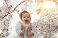 Happy family. mother hands throws up child in the blooming apple trees, on sunny day in the park. Positive human emotions, feeling Royalty Free Stock Photo