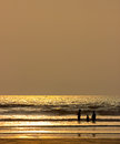 Happy family silhouette on beach of a bathing in the at sunset golden orange sky and water reflections copy space for your needs Royalty Free Stock Photos