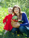 Happy  family with vegetables  in garden Royalty Free Stock Image