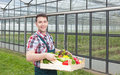 Happy farmer in front of a greenhouse with vegetables Royalty Free Stock Photo
