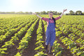 Happy farmer girl in sunflower field Royalty Free Stock Photo