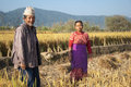 Happy farmers in their paddy field in nepal Stock Image