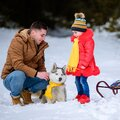 Happy father with daughter on a walk in the woods, girl and husky in yellow scarves, bright clothes in winter Royalty Free Stock Photo