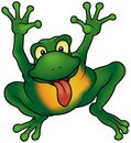 Happy Frog Stock Photography