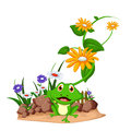 Happy frog cartoon on garden