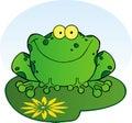 Happy frog on a lilypad