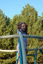 Happy girl on climbing frame Royalty Free Stock Image