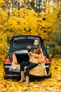 Happy girl and dog sitting in the trunk of a car in nature. Friendship of a man and a dog, travel, camping on an autumn background Royalty Free Stock Photo
