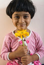 Happy Girl with Gerbera Royalty Free Stock Image
